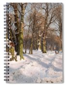 Snowy Forest Road In Sunlight Spiral Notebook