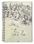 Snowy Forest Vintage Spiral Notebook