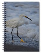 Snowy In The Surf Spiral Notebook