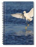Snowy Landing Spiral Notebook