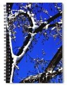 Snowy Limbs 14051 Spiral Notebook