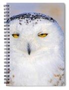 Snowy Owl Portrait Spiral Notebook
