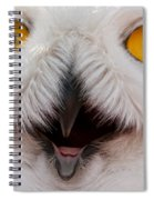 Snowy Owl Up Close And Personal Spiral Notebook
