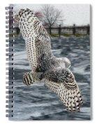 Snowy Owl Wingspan Spiral Notebook