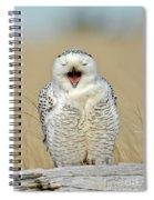Snowy Owl Yawning Spiral Notebook