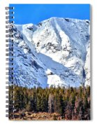 Snowy Ridge Spiral Notebook