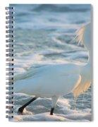 Snowy Siesta Key Sunset Spiral Notebook