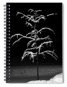 Snowy Sophistication - An Elegant Fledgling Spiral Notebook