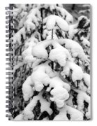 Snowy Tree - Black And White Spiral Notebook