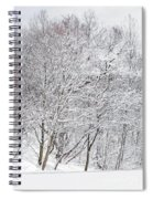 Snowy Trees In Winter Park Spiral Notebook