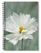 Snowy White Cosmos Spiral Notebook