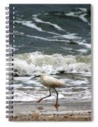 Snowy White Egret Spiral Notebook