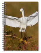 Snowy Wingspread Spiral Notebook