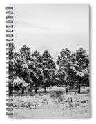 Snowy Winter Pine Trees In Black And White Spiral Notebook