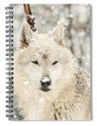Snowy Wolf Spiral Notebook