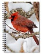 Snowy Wonder Spiral Notebook