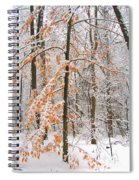 Snowy Woods Spiral Notebook