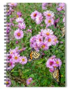 So Many Wings Spiral Notebook