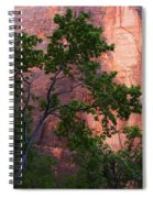 So Zion 3 Spiral Notebook