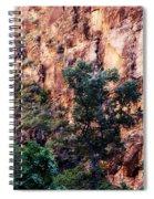 So Zion Spiral Notebook