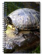 Soaking Up The Sun Spiral Notebook