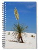 Soap Yucca Spiral Notebook