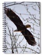 Soaring Above Spiral Notebook