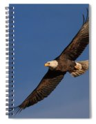 Soaring Bald Eagle Spiral Notebook