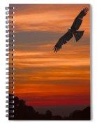Soaring Bird Of Prey Spiral Notebook
