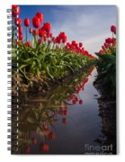 Soaring Crimson Tulips Spiral Notebook
