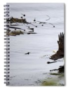 Soaring Eagle Spiral Notebook