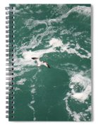Soaring Over The Falls Waters Spiral Notebook
