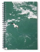 Soaring Over The Falls Waters Too Spiral Notebook