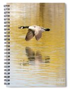 Soaring Over The River Spiral Notebook