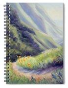 Soberanes Canyon  Spiral Notebook