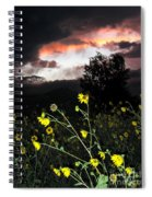 Socorro Sunset Spiral Notebook