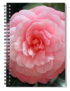 Soft And Pink Spiral Notebook