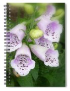 Soft And Silky Laced Gloves Spiral Notebook
