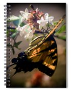 Soft As The Morning Light Spiral Notebook