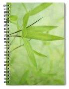 Soft Bamboo Spiral Notebook