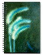 Soft Blue Grass Spiral Notebook