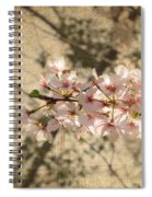 Soft Caress Of Pink Spiral Notebook