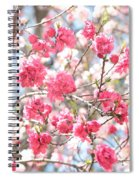 Soft Colors Of Spring Spiral Notebook