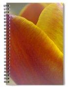 Soft Details  Spiral Notebook