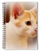 Soft Expression Spiral Notebook