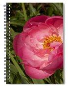 Soft Floral Spiral Notebook