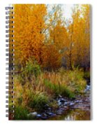 Soft Forest Colors Spiral Notebook
