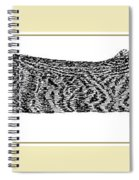 Soft Kitty Warm Kitty Spiral Notebook