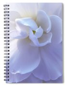 Soft Lavender Begonia Flower Spiral Notebook