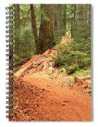 Soft Light Along The Cheakamus Lake Trail Spiral Notebook